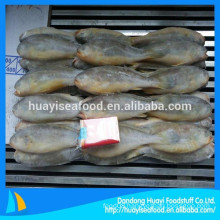 Whole Frozen Sea Yellow Croaker